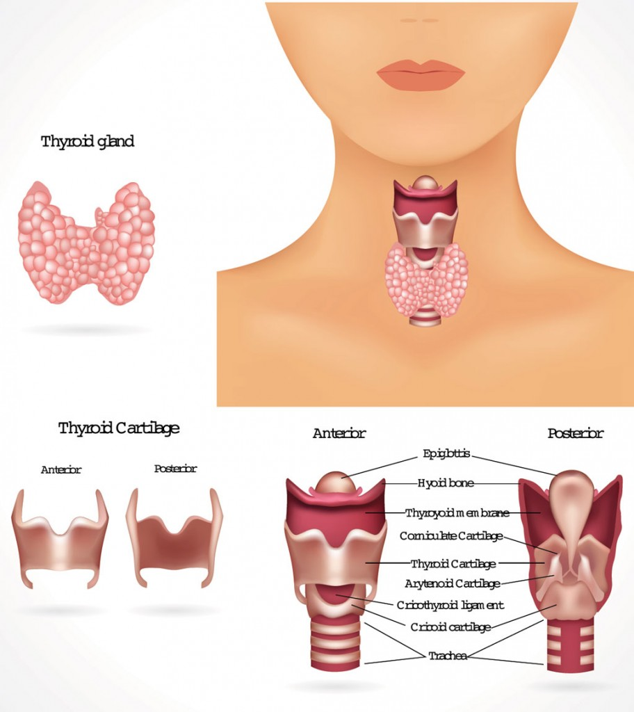 Thyroid disease (hyperthyroidism) treated at Fort Worth ENT and Sinus